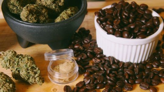 Неизвестный кофе: 5 удивительных фактов